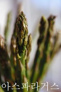 あすぱらがす、asparagus