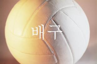 排球、はいきゅう、ばれーぼーる、配球、volleyball
