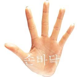 ニジンスキー の 手