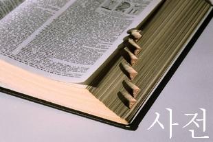 辞典/辞書